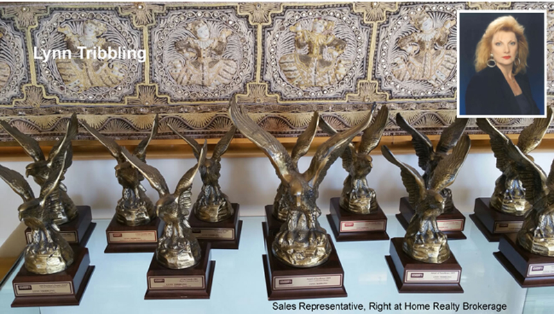 Lynn Tribbling's Awards
